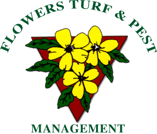 Flowers Turf and Pest | Flowers Turf and Pest
